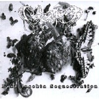 CELESTIA - Dead insecta Sequestration