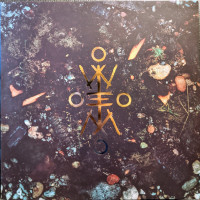 WITH THE END IN MIND - Tides of Fire (LP ltd.)
