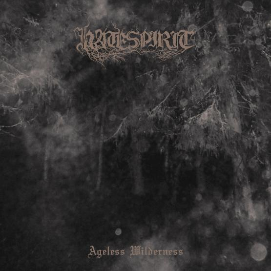 HATESPIRIT Ageless Wilderness (LP)