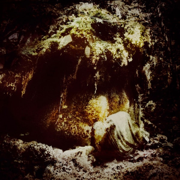 WOLVES IN THE THRONE ROOM Celestial Lineage